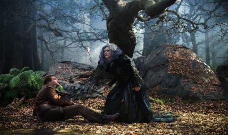 En el bosque 3